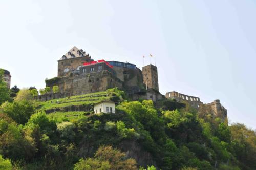 Burg Rheinfels, Foto: Scouting
